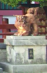 Naminoue - Shisa male